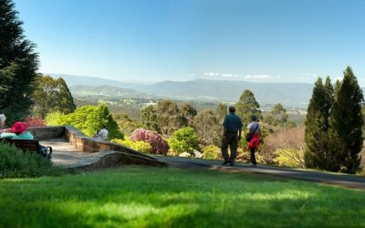 We love Dandenong! Some of the city's highlights